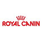 Royal Canin: подарок любознательным